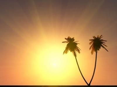 Cinco dicas para cuidar do seu minhocário no verão